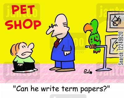 How to write a term paper - essay writing help from Essay